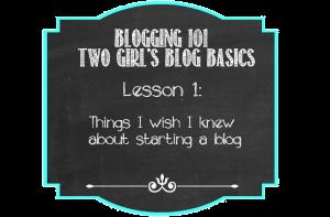 Blogging Basics1