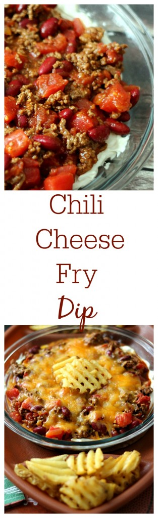 Chili Cheese Fry Dip, yum!