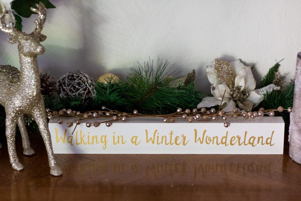 Walking in a Winter Wonderland (1 of 1)